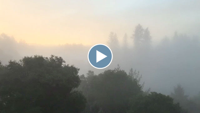 Misty Santa Cruz Sunrise – November 2014