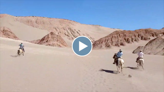 Chile's Atacama Desert – Sept/October 2015