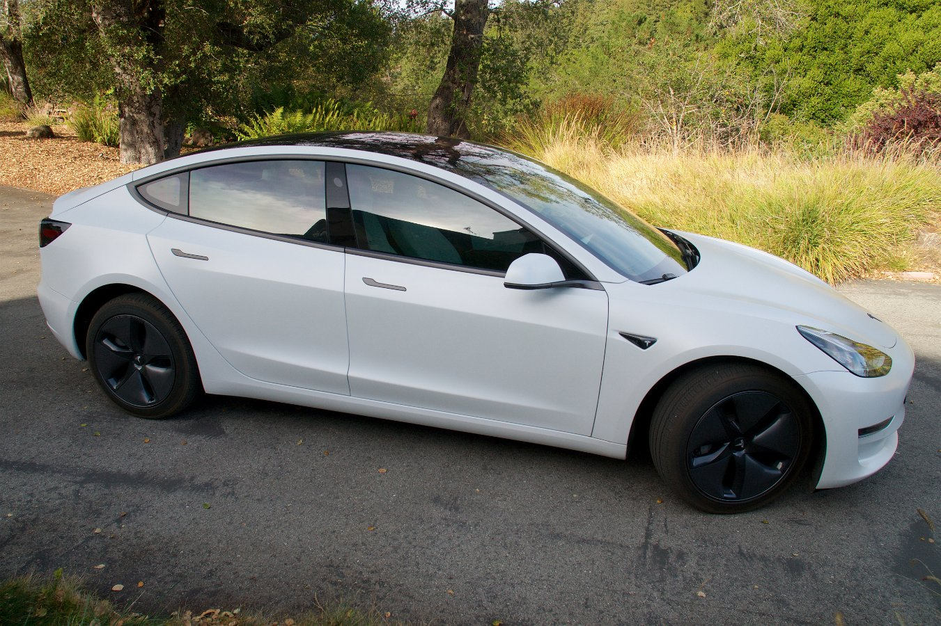 Anyone Have White Interior With Tint Tesla Motors Club