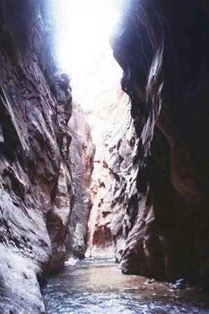 Narrows1