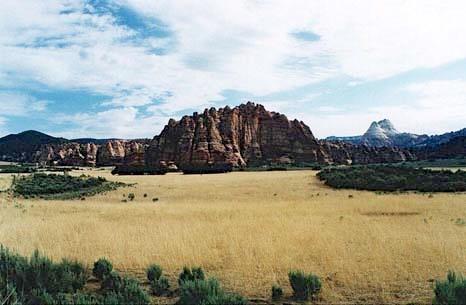 Zion-Grassland
